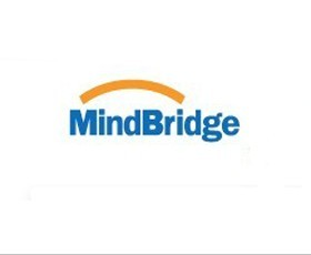 MIND BRIDGE