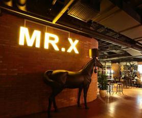 X先生真人密室